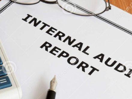 internal audit healthcare