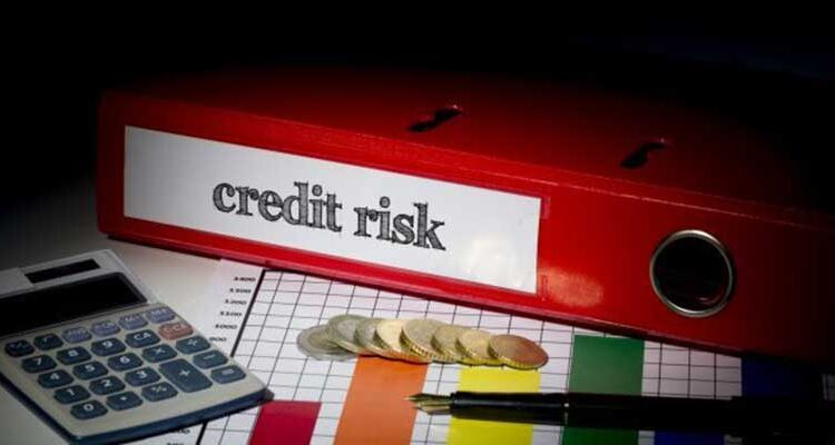 Ways in which you can effectively manage your Credit Risk