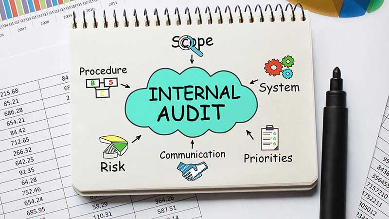 Premise Indicator Words: Internal Auditor Responsibilities