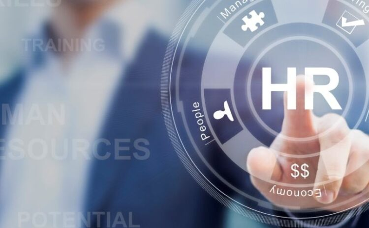 Approaches to Human Resource Audit