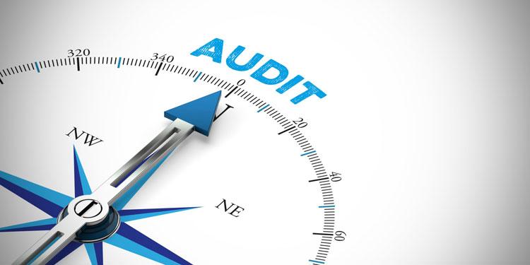 Single Audit Guidelines – COVID-19 Scenario in FY 2020-21